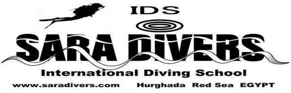 Red Sea Diving holiday in Egypt. Go Dive Hurghada이집트 후르가다 홍해